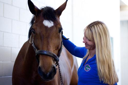 UF Equine Lameness Dr. Alison Morton