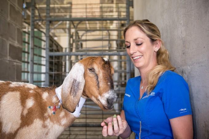 Goat & Ashley Hudson