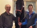 Success Story: A Friesian Colic